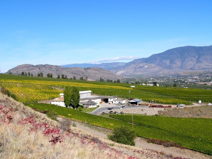 British Columbia S Wineries Near Oliver Bc