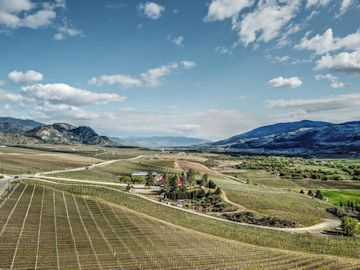 The Wineries To Watch In 2019