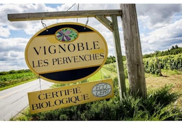 Les Pervenches Vineyards